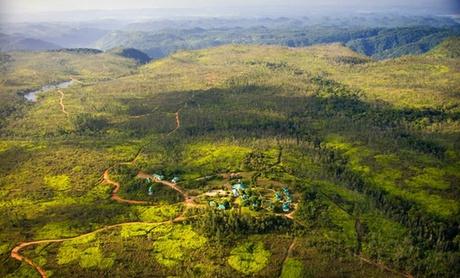 Luxury Eco-Resort in Belize Rainforest