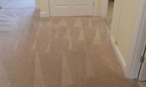 Red Carpet Treatment: Carpet Clean For Up to Six Rooms from Red Carpet Treatment