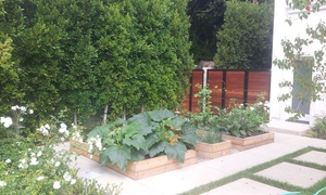 New Leaf Landscaping / Edible Landscapes: $200 for $500 Worth of Landscaping — Edible Landscapes La