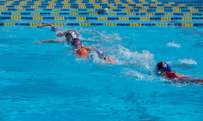 Gator Water Polo, Inc - Multiple Locations: Four Weeks of Sports Camp at Gator Water Polo, Inc (69% Off)