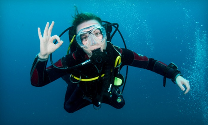 The Scuba Connection - Hillsborough: $179 for a PADI Basic Open-Water Diving Course at The Scuba Connection ($254 Value)