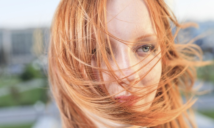 Evy D's Beauty Services - Tampa Bay Area: Haircut, Highlights, and Style from Evy D's Beauty Services (55% Off)