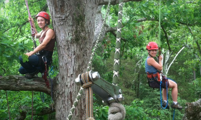 Riverside Outfitters - Richmond: Tree-Climbing Adventure for One or Two from Riverside Outfitters (Half Off)