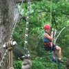 Half Off Tree-Climbing Adventure