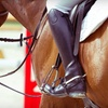 Up to 52% Off Horseback Lessons in Wimberley