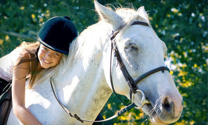 Champion Training Center - Coast Range: Two or Four Horseback- or Pony-Riding Lessons at Champion Training Center (Half Off)