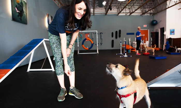 Zoom Room - Zoom Room Culver City: $35 for an Evaluation and Two Group Classes at Zoom Room ($85 Value)