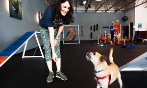 Zoom Room: $35 for an Evaluation and Two Group Classes at Zoom Room ($85 Value)