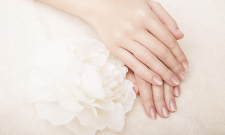 Up to 42% Off Shellac Manicure at Taylor at Tanglez
