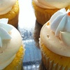 $11 for Cupcakes at Shockley's Sweet Shoppe