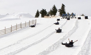 Mt. Baldy: Lift Ride and Snow Tubing for One, Two, or Four at Mt. Baldy (Up to 56% Off)