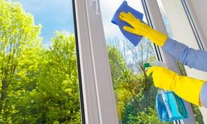 Ludo Vitres: 1h ou 2 h de lavage de vitres dès 24,99 € avec Ludo Vitres