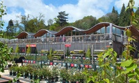 Batsford Arboretum and Garden Centre: Family Ticket for Two Adults and Two Children