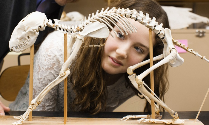Museum of Natural History - Halifax: Admission for Two Adults or Family at Museum of Natural History (Up to 45% Off)