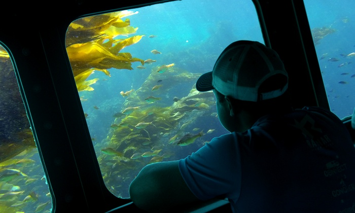 Sea Life Discovery - Balboa Peninsula Point: 1.5-Hour Corona Del Mar Submarine-Views Cruise for One or Two Adults from Sea Life Discovery (Up to 31% Off)