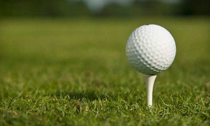 Tee It Up Card: $39 for Discounts at Eight Indianapolis Golf Courses from Tee It Up Card ($79 Value)