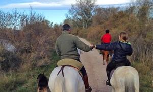HIPICA RIDING SCHOOL: Paseo a caballo para 2 o 4 personas por la Ribera del Ebro desde 24,95 € en Hípica Riding School