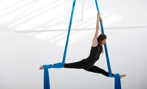 Center for Ballet Arts: Five Aerial Fitness Classes at Center for Ballet Arts  (51% Off)