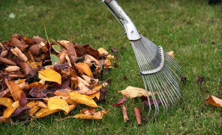 1 Hour of Springtime Yard Maintenance and Cleanup (an $80 value)  - Artefacto Landscapes in