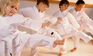 David Gallaher's Gung Fu Institute: One Month Children Martial Arts Kung Fu Classes at David Gallaher's Gung Fu Institute (55% Off)