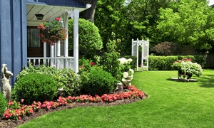 Weed Man: Weed Control and Crabgrass Treatment with Optional Slow-Release Fertilizer from Weed Man (Up to 82% Off)