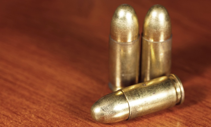 Ware Gun Shop - Ware: Concealed-Weapons Course for One or Two at Ware Gun Shop (Up to 53% Off)