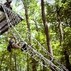 Up to 53% Off Zipline Canopy Tour