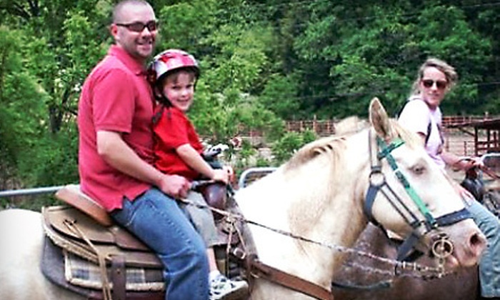 Sandy Bottom Trail Rides - 1, South Marshall: Two-Hour Horseback Trail Ride for One, Two, or Four at Sandy Bottom Trail Rides (Up to 57% Off)