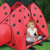 Ladybug Play Tent with Tunnel and Carry Case