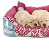 Waverly 3-Piece Dog Bed Set