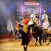 "Big Apple Circus – Up to 41% Off ""Luminocity"""