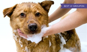 Scrubbers Self-Serve Dog Wash & Grooming: One or Three Self-Service Dog-Washing Sessions at Scrubbers Self-Serve Dog Wash & Grooming (Up to 50% Off)