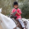 Up to 59% Off Horseback Riding in Weisenberg Township