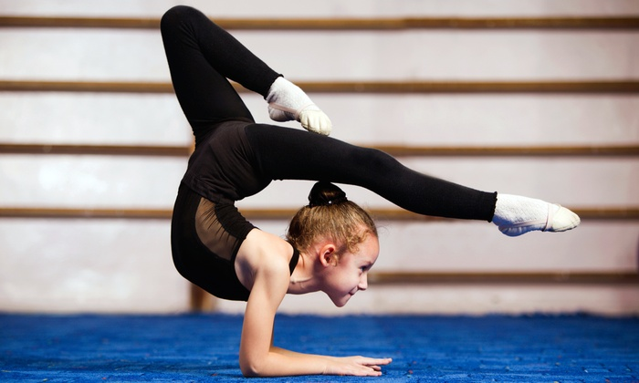 Ms. Carol's Gymkids - Mesa: Eight Weeks of Gymnastics or Family Fitness Classes or Open-Gym Sessions at Ms. Carol's Gymkids (Up to 69% Off)