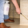 Up to 58% Off Pest-Control Treatments