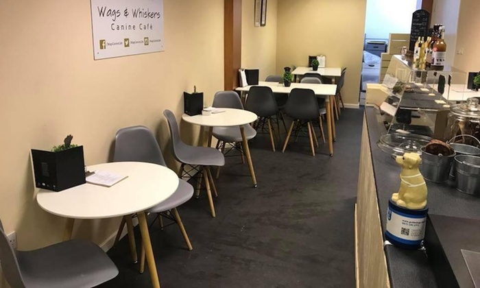 Dog Friendly Lunch for Two or Four People and Dogs at Wags & Whiskers Canine Cafe