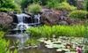 The Oregon Garden - Silverton, OR: Visit for Two or Four at Oregon Garden in Silverton (Up to 50% Off)