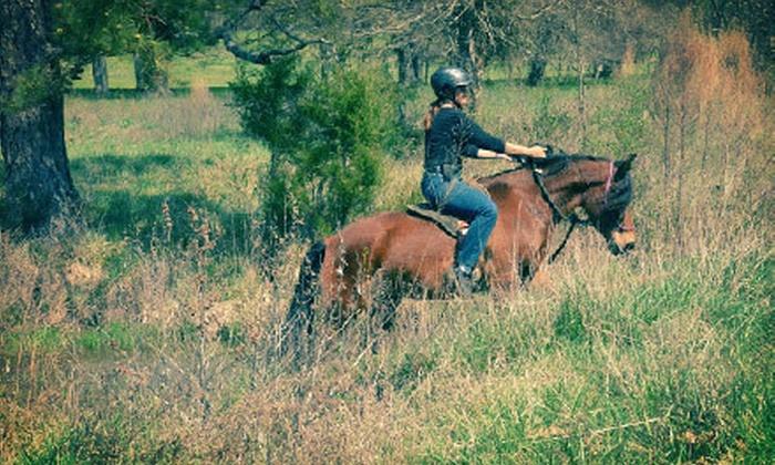 Katy Nichoalds Horsemanship - Northwest Columbia: $99 for Five 60-Minute Private Horseback-Riding Lessons at Katy Nichoalds Horsemanship ($250 Value)