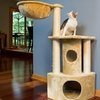 Iconic Pet Cat Trees and Furniture