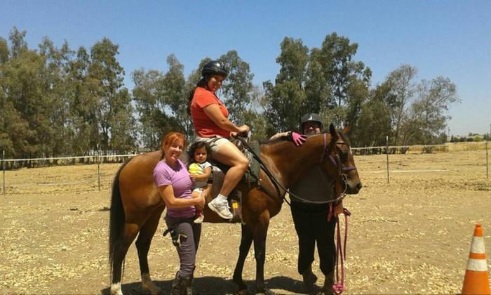 Healing Hands Horsemanship, Inc. - Sacramento: One-Hour Horseback-Riding Lesson at Healing Hands Horsemanship, Inc. (27% Off)