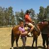 27% Off a Horseback-Riding Lesson