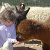 Up to 60% Off Tours at Victory Ranch in Mora