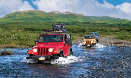 Denali Backcountry Jeep Safari for Two from Alaska Travel Adventures (Up to 50% Off)