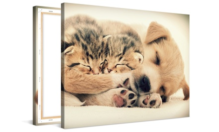 Photos on Gallery-Wrapped Canvas from CanvasOnSale (Up to 88% Off)