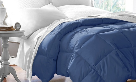 Hotel Grand All Seasons Down Alternative Comforter Was: $99.99 Now: $19.99.