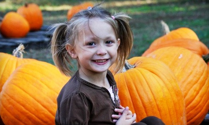 Priddy Farms - Bartlett: $12 for Autumn Outing with Hayride, Train Rides, and Pumpkins for a Family with Two Kids at Priddy Farms ($20 Value)