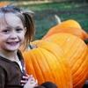 40% Off an Autumn Farm Visit