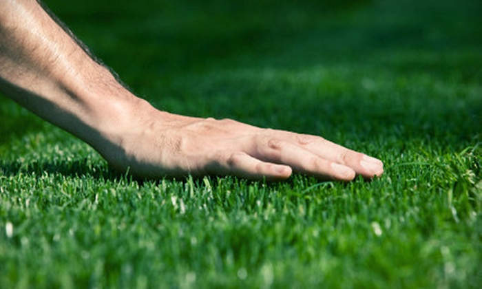 Weed Man - Salt Lake City: $25 for Full Weed-Control and Crabgrass Treatment from Weed Man (Up to $56 Value)