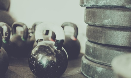 Four Weeks of Gym Membership at War Hammer Strength and Fitness (74% Off)