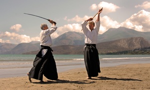 Big Sky Aikido: $39 for Eight Beginners' Aikido Classes at Big Sky Aikido ($85 Value)